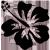 http://nideyleforum.free.fr/boutiques/tatoueur/tatouages/hibiscus.png