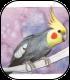 http://nideyleforum.free.fr/illustrations/pnj/animaux/tek.png
